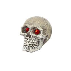 Penn Plax Deco Replica Skull Gazer style assortie 2 inch