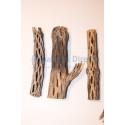 Cholla Wood 6''