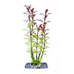 Penn Plax Red Ludwigia Plant - SUPER 18''